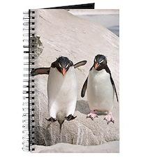 Funny Rockhopper penguins Journal