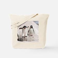 Cute Falklands penguin Tote Bag
