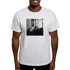 Ferret Saying 265 Ash Grey T-Shirt