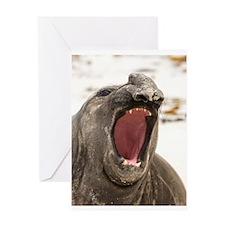 Funny Falkland islands Greeting Card