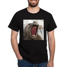 Elephant Seal 010108 - 078 T-Shirt