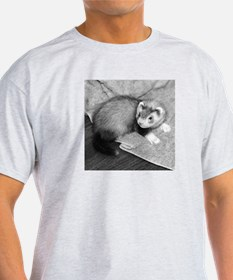 Ferret Saying 319 Ash Grey T-Shirt