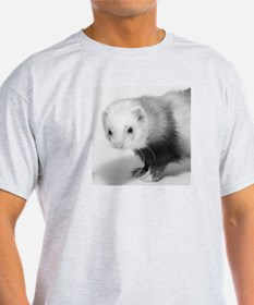 Ferret Saying 374 Ash Grey T-Shirt