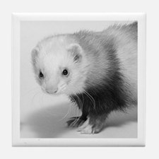 Ferret Saying 374 Tile Coaster