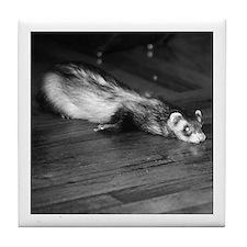 Ferret Saying 402 Tile Coaster