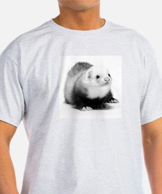 Ferret Saying 422 Ash Grey T-Shirt