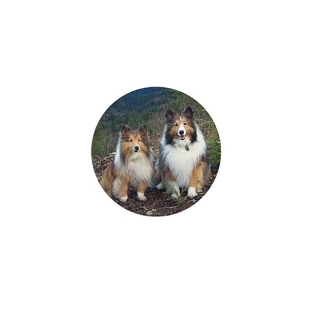 Cute TWIN SHELTIE Photo Portrait Mini Button