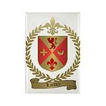 LANDRY Family Crest Rectangle Magnet (10 pack)