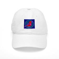 Red Crossbill Baseball Cap