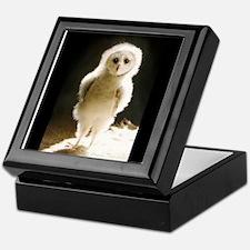 Cute Owl box Keepsake Box