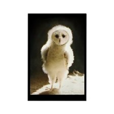 Baby WesleyTheOwl Rectangle Magnet