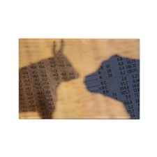 Shadow of the Bull and Bear Rectangle Magnet
