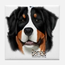 Unique Berner Tile Coaster