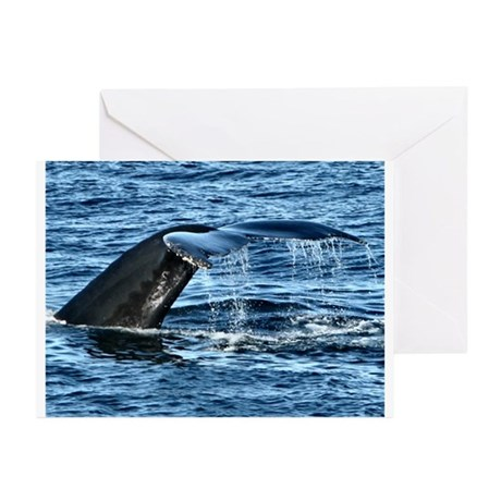 Whale Tail - Greeting Cards (Pk of 10)