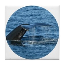 Whale Tail - Tile Coaster