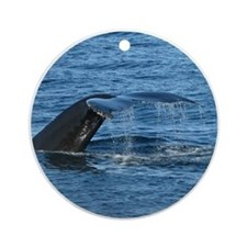 Whale Tail - Ornament (Round)