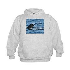 Whale Tail - Hoodie