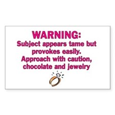 Chocolate & Jewelry Rectangle Decal