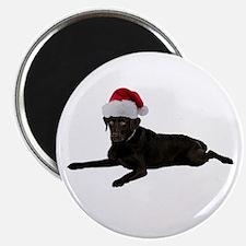 Black Lab Christmas Magnet