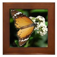 African Monarch Butterfly Framed Tile