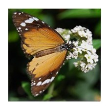 African Monarch Butterfly Tile Coaster