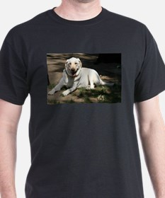 Lazy Day in the Sun T-Shirt