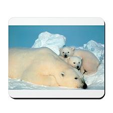 Lazy Polar Bears Mousepad