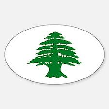 Cedar Tree of Lebanon Oval Decal