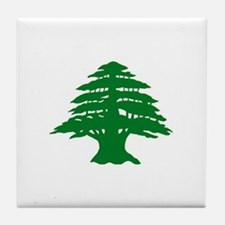 Cedar Tree of Lebanon Tile Coaster
