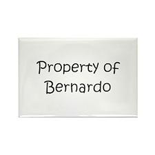 Unique Bernardo Rectangle Magnet