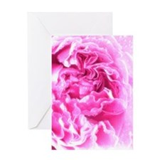 Greeting Cards Greeting Card