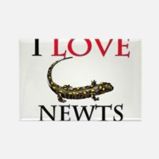 I Love Newts Rectangle Magnet