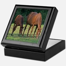 Horse and Foal Keepsake Box