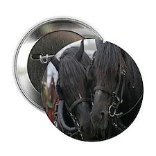 "Percheron Draft Horses 2.25"" Button (100 pack)"