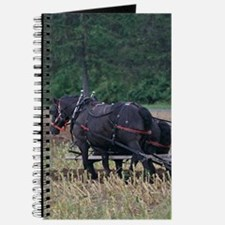 Draft Horses Plowing Journal