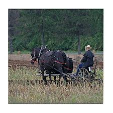 Draft Horses Plowing Tile Coaster