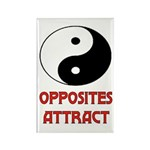 OPPOSITES ATTRACT Rectangle Magnet (10 pack)