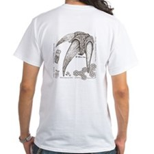 Fossils Armadillo and Ground Sloth Shirt