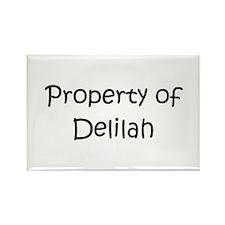 Cool Delilah Rectangle Magnet