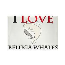 I Love Beluga Whales Rectangle Magnet