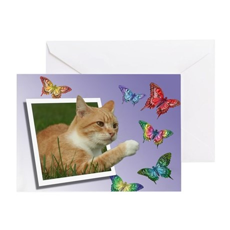 curious Greeting Cards