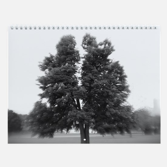 2010 Scenic Photo Wall Calendar