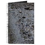 Rocky Creek Journal