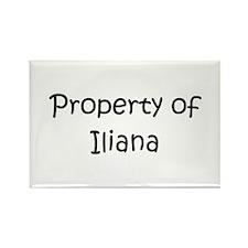 Unique Iliana Rectangle Magnet