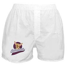 Chihuahuas Boxer Shorts