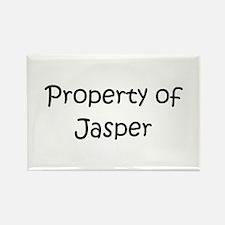 Cute Jasper Rectangle Magnet