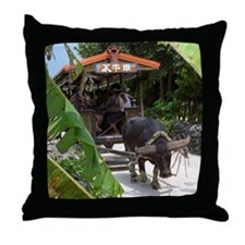 Taketomi Buffalo 1 Throw Pillow