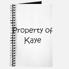 Funny Kaye Journal