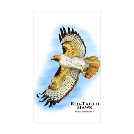 Red-Tailed Hawk Rectangle Sticker