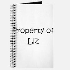 Cute Liz Journal